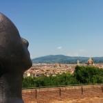 Firenze vista dall'alto 2